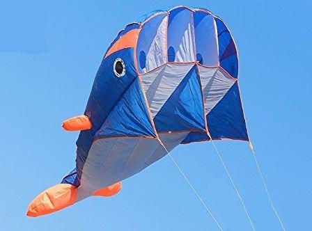Fly Line Winder - 2