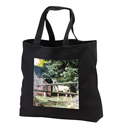 Jos Fauxtographee- Deer Behind Fence - A Deer behind a fence near some pine trees - Tote Bags - Black Tote Bag JUMBO 20w x 15h x 5d (tb_304191_3)
