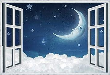 Photography Background Wall Backdrop Prints Decor Dreamlike Moon