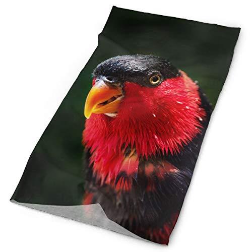 Parrot Beak Macro Birds Unisex Fashion Quick-Drying Microfiber Headdress Outdoor Magic Scarf Neck Neck Scarf Hooded Scarf Super Soft -