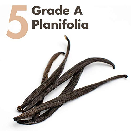 Vanilla Beans (Planifolia) Grade A Whole - 5 x Prime Gourmet - 5 to 6 inches for Extract, Baking, Coffee, Brewing, Cooking