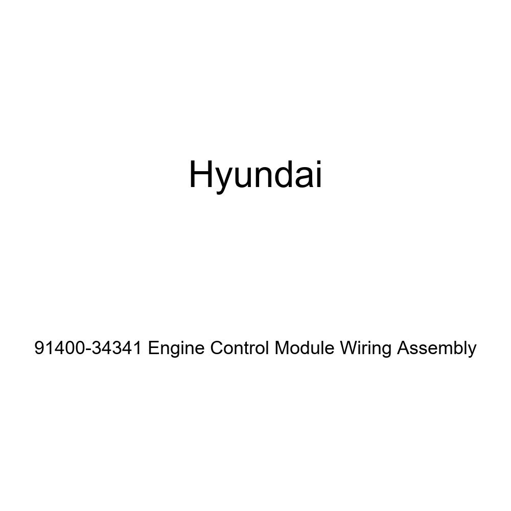 Genuine Hyundai 91400-34341 Engine Control Module Wiring Assembly