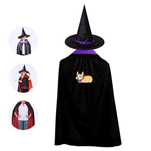 69PF-1 Halloween Cape Matching Witch Hat Funny Corgi