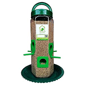 PetNest 6 Port Bird Feeder for All Birds (Transparent)