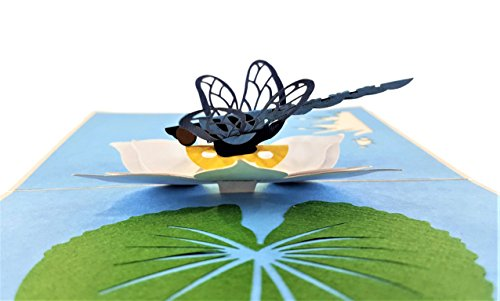 - iGifts And Cards Blue Dragonfly 3D Pop Up Greeting Card - Insect, Lily Pad, Pond, Floral, Half-Fold, Happy Birthday, Just Because, Get Well, Celebration, Friendship, Thank You, Bon Voyage, New Home