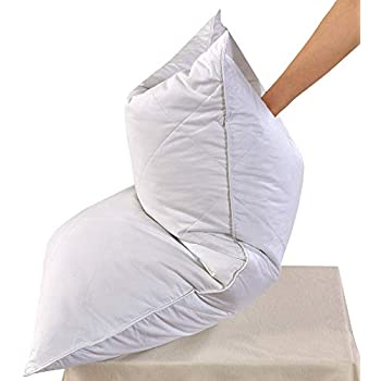 Amazon Com White Goose Feather Bed Pillow 600 Thread