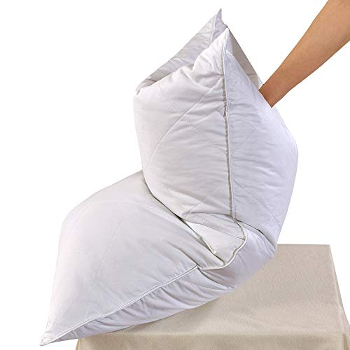 Set of 2 White Goose Feather Bed Pillows - 600 Thread Count Egyptian Cotton, Medium Firm,Soft Support Queen Size,White Solid (Queen Size:2 Pillows) ()