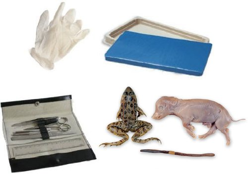 Student Dissection Kit (Frog, Worm, Pig) by The Science Shop®
