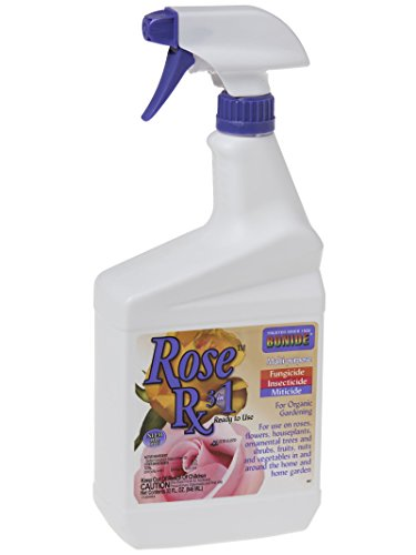 037321008972 - BONIDE PRODUCTS 897 Rose RX Insecticide, Quart carousel main 1