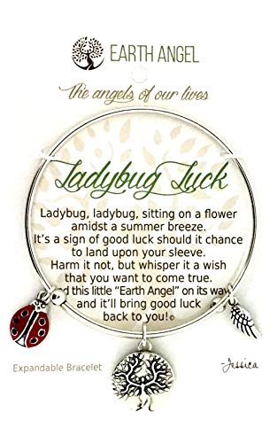 Earth Angels Ladybug Luck Bangle Charm Bracelet -