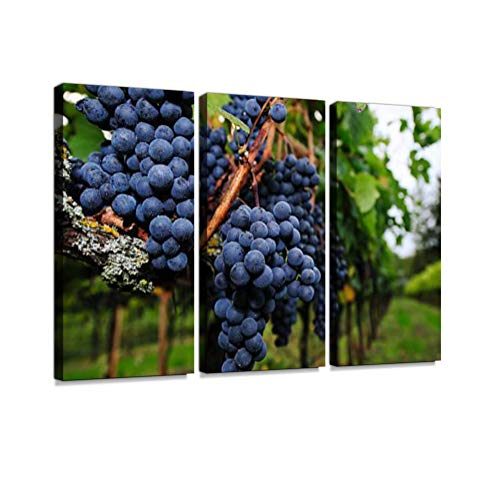 (7houarts Ripe Grapes Ready for Harvest Canvas Wall Artwork Poster Modern Home Wall Unique Pattern Wall Decoration Stretched and Framed - 3 Piece)