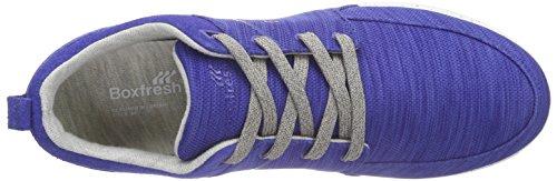 Boxfresh Aggra Flk Mesh/Sde - Zapatillas Hombre Azul - Blau (BOLD BLUE/GREY)