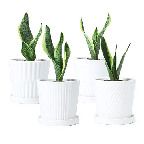 Greenaholics Ceramic Plant Pots Indoor – 5.1 Inch White Flower Planters with Drainage Holes and Connected Saucers for…
