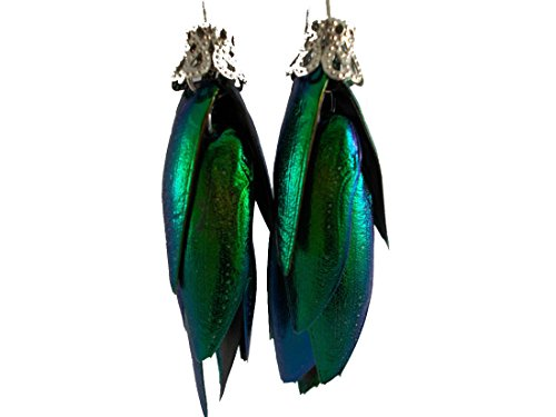 Long Earrings Silver Hoop Pendant Real Handmade jewelry Beetle Wing Insect Bugs 1 pair