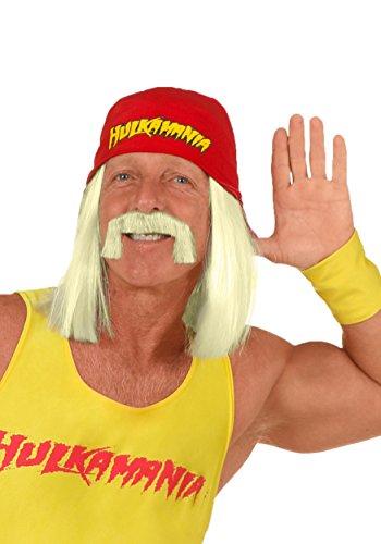 Fun Costumes Mens Hulk Hogan Wig Standard