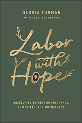 Labor with Hope: Gospel Meditations on Pregnancy, Childbirth