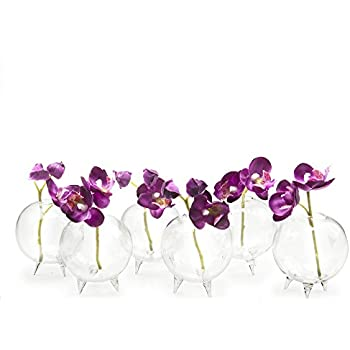 Amazon Com Chive Small Clear Glass Bud Vase For Short Flowers Unique Low Sitting Flower Vase
