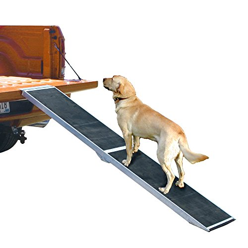 Rage Powersports DR-07 Lightweight Portable Folding Aluminum Pet Ramp