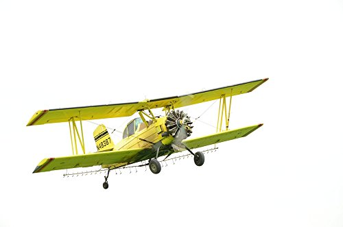 Yellow Biplane - Home Comforts Laminated Poster Plane Duster Crop Duster Bi-Plane Yellow Aircraft Poster Print 24 x 36