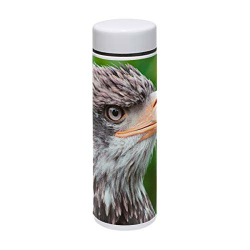 Eagles Thermos Stainless Steel (Jojogood Eagle Water Bottle Stainless Steel Vacuum Insulated Leak Proof Double Walled Keeps Cold for 24 Hours, Hot for 12 Hours BPA Free Thermos Flask Mini 8 Oz)