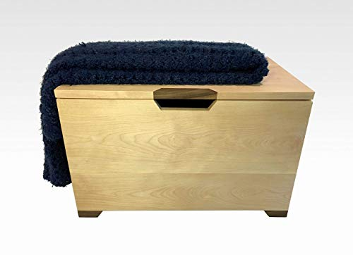 Modern Hope Chest Trunk in Natural Birch and Walnut by CW Furniture