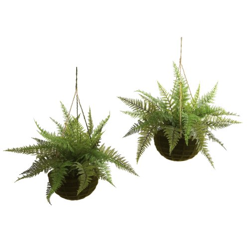 Nearly Natural 6743S2 Indoor/Outdoor Leather Fern with Mossy Hanging Basket Green Set of 2
