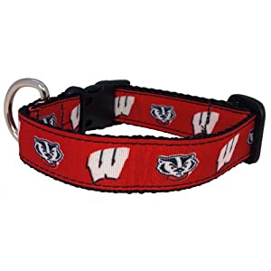 All Star Dogs NCAA Wisconsin Badgers Collegiate Dog Collar (Medium)