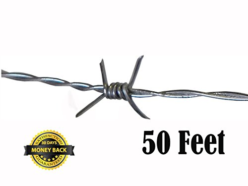 old barbed wire - 6
