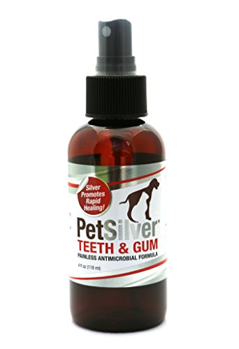 PetSilver Teeth & Gum Spray for Dogs and Cats | Vet Formulated | Natural Dental Care Solution | Control Tarter and Plaque Build Up | Antimicrobial Formula - No Brushing | Easy to Apply