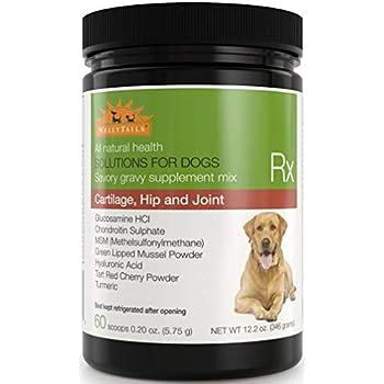 Amazon.com : WellyTails Glucosamine Chondroitin MSM