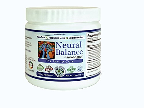 Neural Balance Natural Berry Flavor 9.5 Ounce 60 Servings