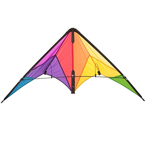 HQ Kites Beach and Fun Calypso II Radical- Beginner Stunt Kite -  43 Inch Dual - Line Sport Kite,  Color: Rainbow - Active Outdoor Fun for Ages 8 Years and Up - Perfect for Adults or Children (Best Beginner Stunt Kite)