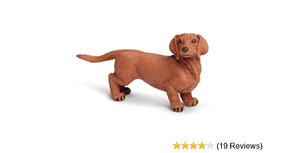 Safari Ltd. Best in Show Dachshund Quality Construction from Phthalate, Lead and BPA Free Materials For Ages 3 and Up