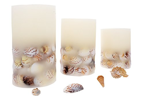 Set of 3 Flameless Real Wax Candle Sets with Real Seashells with Color Changing and Timer with the - Seashell Color