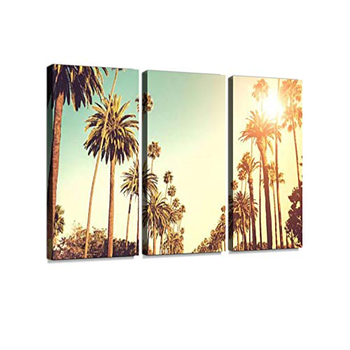 Sun Shining on Palm Trees 3 Pieces Print On Canvas Wall Artwork Modern Photography Home Decor Unique Pattern Stretched and Framed 3 Piece