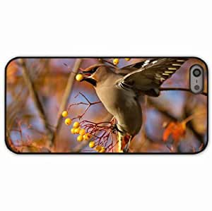 iPhone 5 5S Black Hardshell Case waxwing branch berries Desin Images Protector Back Cover