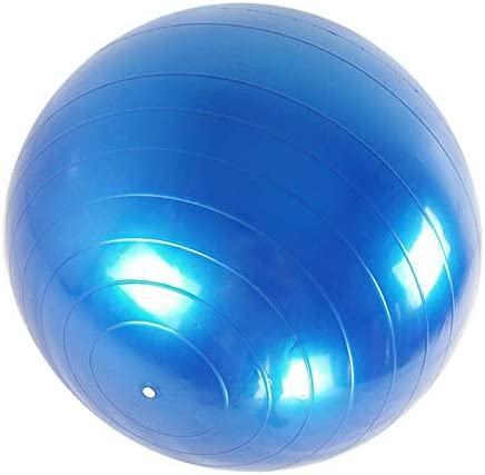 Gimnasio Pilates Pelota de Ejercicio con Bomba para Yoga Fortitude Sports Swiss Ball 65 cm, Antideslizante Fitness