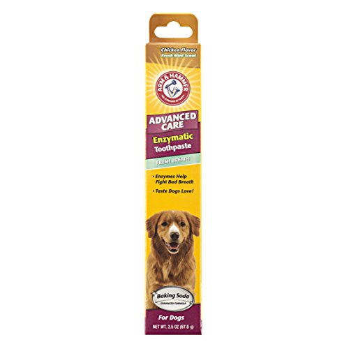 Arm-Hammer-Advanced-Care-Enzymatic-Toothpaste-for-Dogs