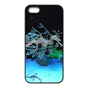 MMZ DIY PHONE CASEThe Peculiar Syngnathus Hight Quality Plastic Case for Iphone 5s