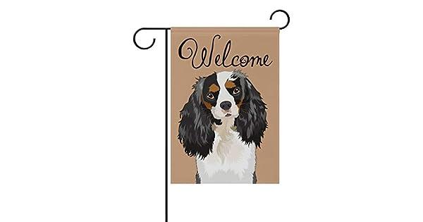 Amazon.com: Mi perro Cavalier King Charles Spaniel de ...