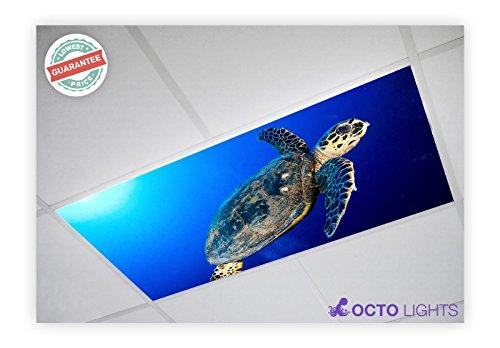 Ocean 008 2x4 Flexible Fluorescent Light Cover