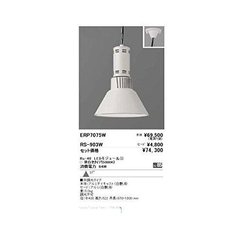 DT17175 ペンダント/チェーン吊型/LED5000K/Rs48 B06XSFGB87