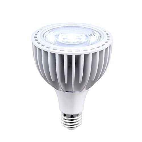 (Aluxcia 40W LED Par30 Swimming Pool Light, E26 Medium Screw Base Par30 Long Neck Spotlight Bulb 300-500W Traditional Bulb Replacement Flood Light, Daylight 6000K, 1-Pack)
