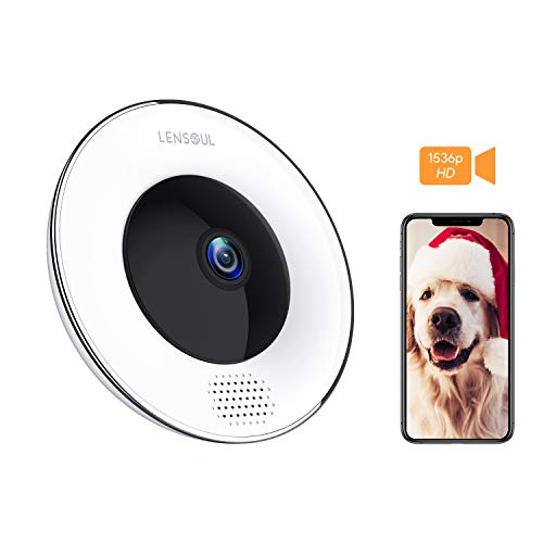 Security Camera,3 Mega-Pixel Wireless IP Camera 360 Degrees 2.4GHz Fisheye Camera Built in Two-Way Audio, Motion Detection, Panoramic Camera with Night Vision-Cloud Service Available