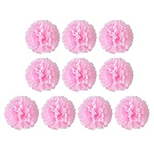Carnation flower Clearance , Artificial Fake Carnations Silk Flower Bridal Hydrangea Home Mother's Day 10pcs by Little Story 9