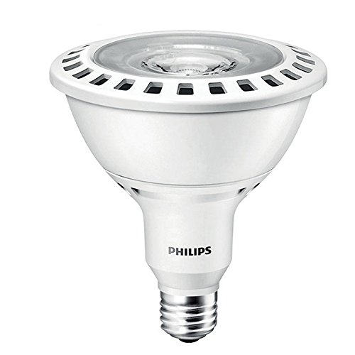 Philips 100W Flood Light in US - 4