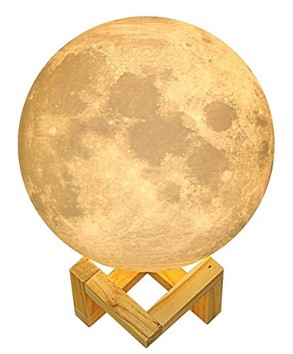 DIMAY Moon Lamp,3D Printing Moon-Moon Light Unique Design,Touch Control,Stepless Dimmable,Warm and White Touch Control Brightness with USB Charging,PLA material,Moon Decor,Diameter 5.9 inch by DIMAY