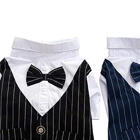 Dora - Camisa para Perro, para Perro, con Corbata Negra, príncipe ...