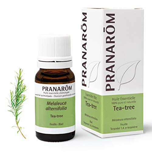 Pranarom - Aceite Esencial de Arbol del Te - Hoja - 10 ml