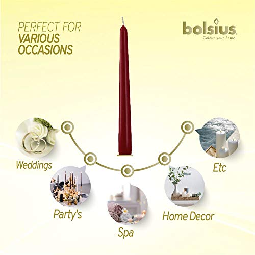 7.5 Hour Long Burning Dripless Candles Bulk Pack of 10 for Home Decor Parties and Special Occasions 10-inch Unscented Premium Quality Wax Wedding BOLSIUS Long Household Red Taper Candles